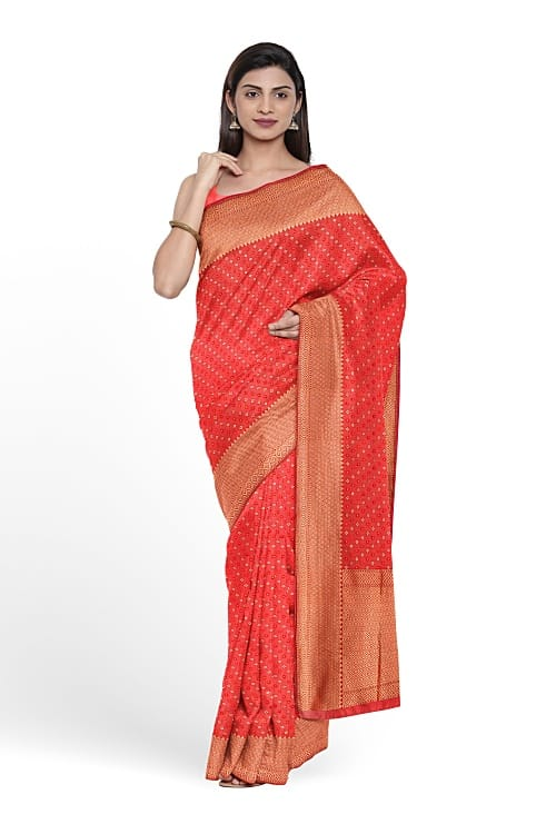 Saree Online Draping on Model with white background using TRI3D
